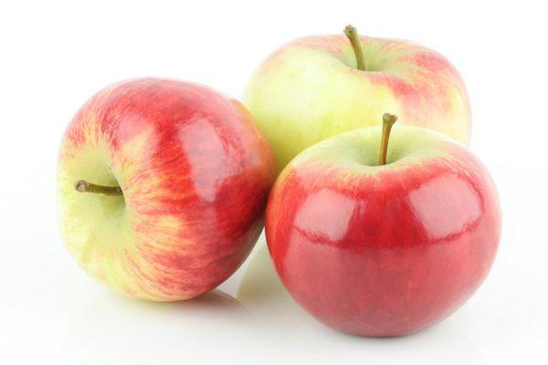 shiny fresh red Elstar apples