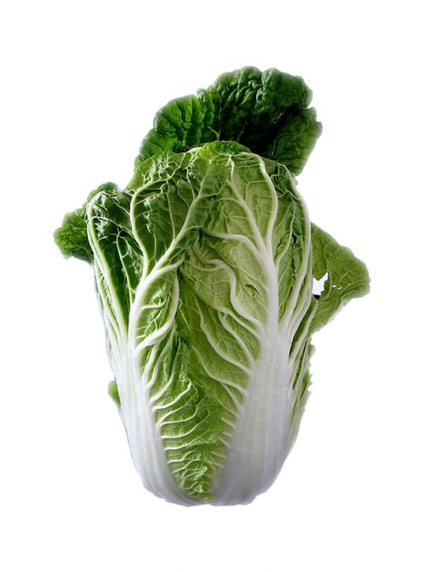 chinese-cabbage-74360