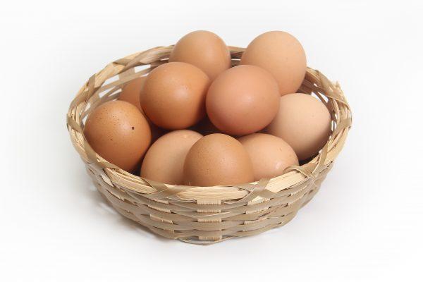 egg-1686641