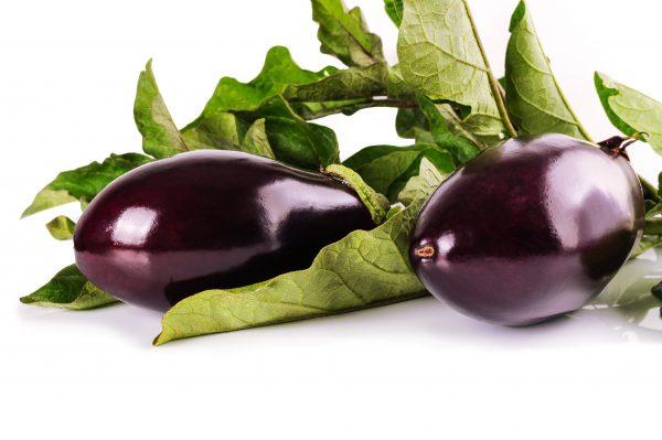 eggplant-1659784