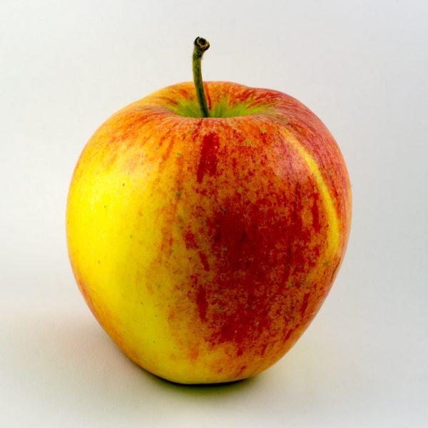 apfel-pinova