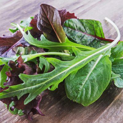 Tagesfrische Salate