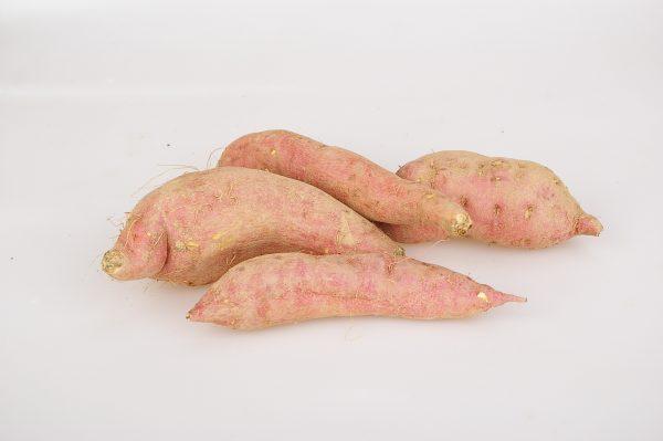 sweet-potato-936680